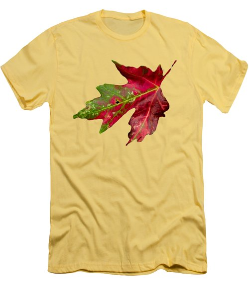 Fall Leaf Men's T-Shirt (Slim Fit) by Judy Hall-Folde