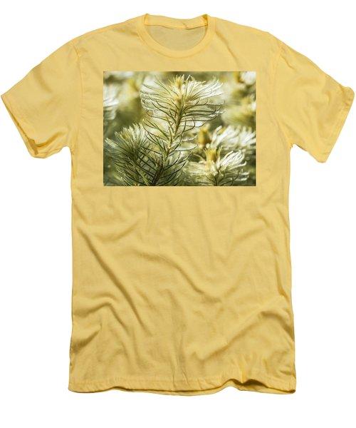 Featherheads Men's T-Shirt (Athletic Fit)