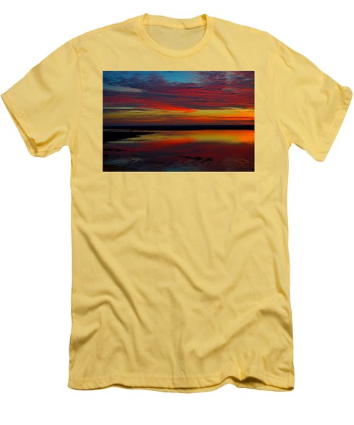 Fireworks From Nature Men's T-Shirt (Slim Fit) by Dianne Cowen