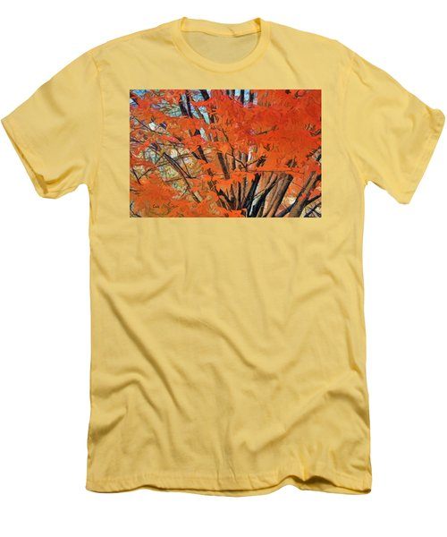 Flaming Fall Foliage Men's T-Shirt (Slim Fit) by Terry Cork