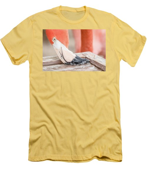 Flamingo At Sea World In Orlando Florida Men's T-Shirt (Athletic Fit)
