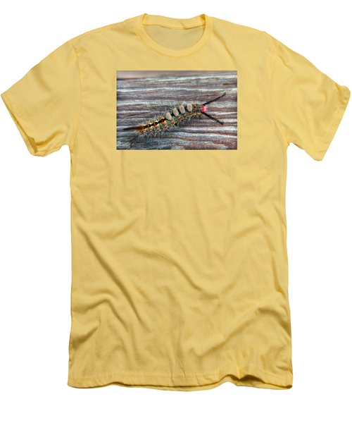 Florida Caterpillar Men's T-Shirt (Slim Fit) by Hanny Heim