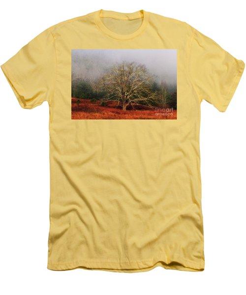 Fog Tree Men's T-Shirt (Athletic Fit)