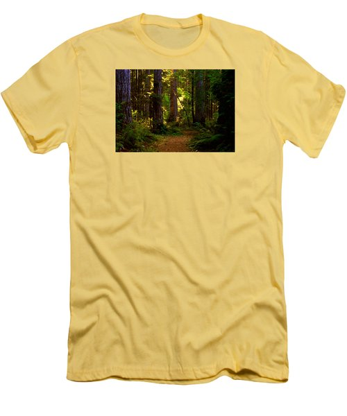 Forest Path Men's T-Shirt (Slim Fit) by Lori Seaman