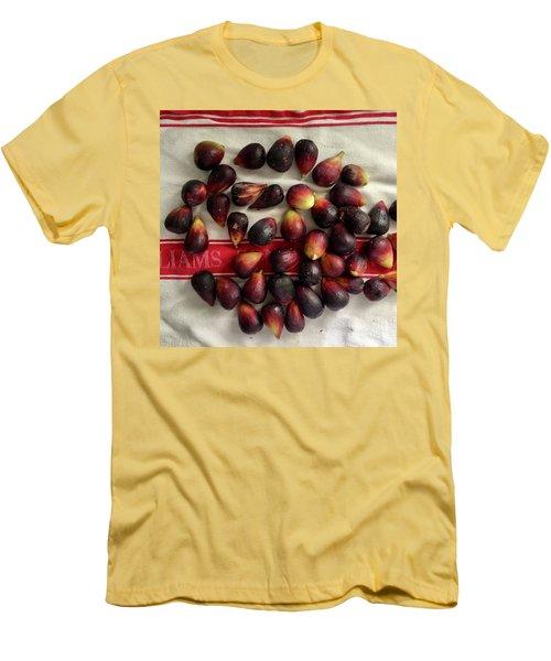 Fresh Figs Men's T-Shirt (Athletic Fit)