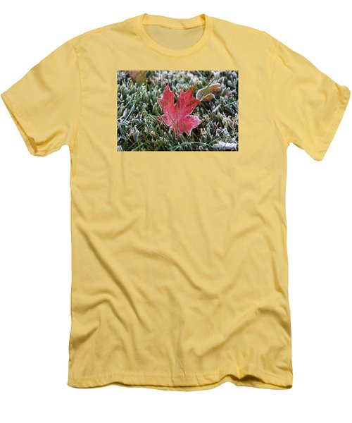 Frosted Maple Leaf  Men's T-Shirt (Slim Fit) by Yumi Johnson