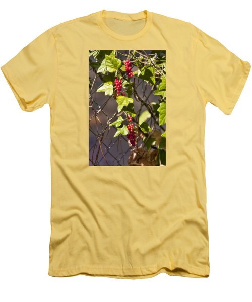 Men's T-Shirt (Slim Fit) featuring the photograph Fruits Of Autumn by Joan Bertucci
