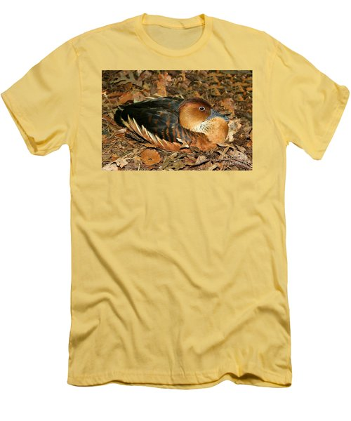 Fulvous Whistling Duck Men's T-Shirt (Athletic Fit)