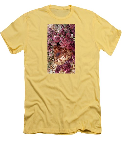 Fungus And Succulents Men's T-Shirt (Athletic Fit)