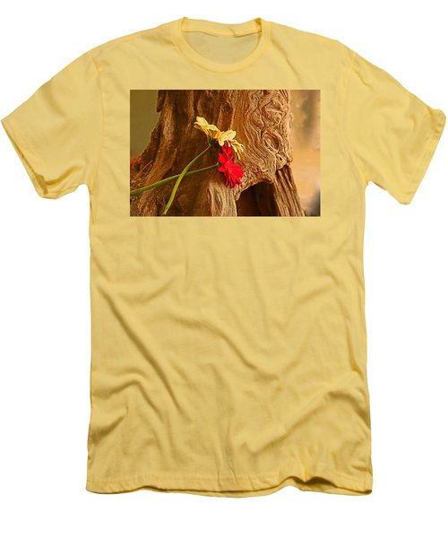 Gerber Daisy On Driftwod Men's T-Shirt (Slim Fit) by Ronald Olivier