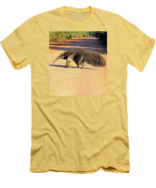 Giant Anteater Crosses The Transpantaneira Highway In Brazil Men's T-Shirt (Athletic Fit)