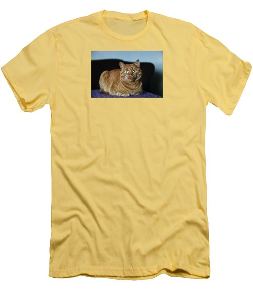 Men's T-Shirt (Athletic Fit) featuring the photograph Ginger Marmalade Cat by Nareeta Martin
