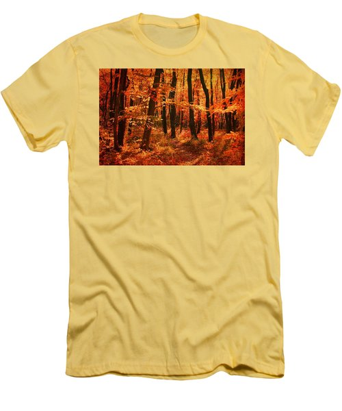 Golden Autumn Forest Men's T-Shirt (Slim Fit) by Gabriella Weninger - David