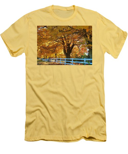 Men's T-Shirt (Slim Fit) featuring the photograph Golden Curtain by Robert Pearson