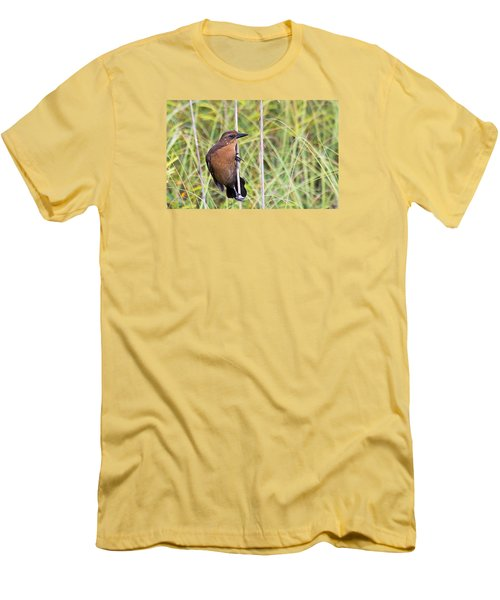 Grackle In The Reeds Men's T-Shirt (Athletic Fit)