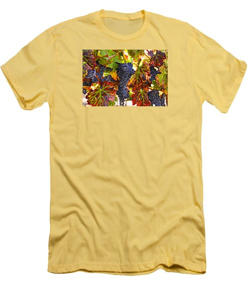 Grapes On Vine In Vineyards Men's T-Shirt (Slim Fit) by Garry Gay