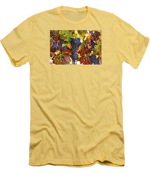 Grapes On Vine In Vineyards Men's T-Shirt (Athletic Fit)