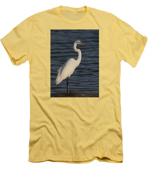 Great Egret In The Last Light Of The Day Men's T-Shirt (Athletic Fit)
