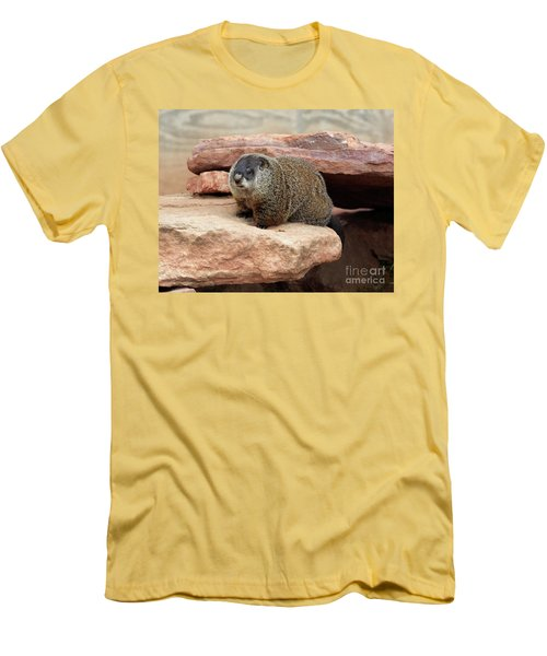 Groundhog Men's T-Shirt (Slim Fit) by Louise Heusinkveld