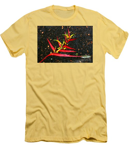 Haleconia Red Gold And Green Men's T-Shirt (Athletic Fit)