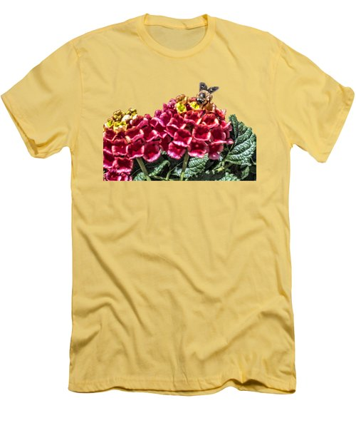 Honey Bee On Flower Men's T-Shirt (Athletic Fit)