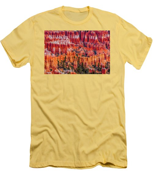 Hoodoo Forest Men's T-Shirt (Slim Fit) by David Cote