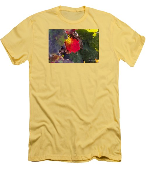 Men's T-Shirt (Slim Fit) featuring the photograph Hot Autumn Colors In The Vineyard by Arik Baltinester
