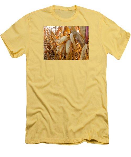 Indiana Corn 3 Men's T-Shirt (Slim Fit) by Tina M Wenger