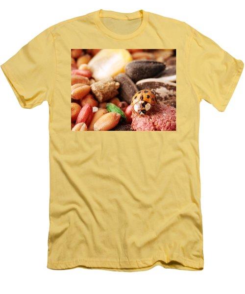 Lucky Ladybug At The Park Men's T-Shirt (Slim Fit) by Belinda Lee