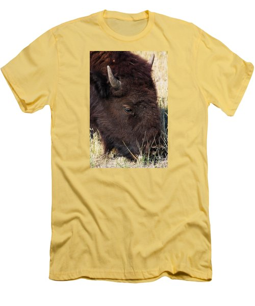 Lonely Bison Men's T-Shirt (Athletic Fit)