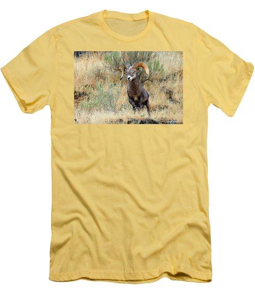 Loner IIi Men's T-Shirt (Athletic Fit)