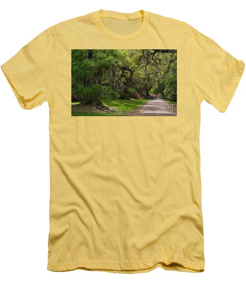 Magnolia Plantation And Gardens Men's T-Shirt (Slim Fit) by Kathy Baccari