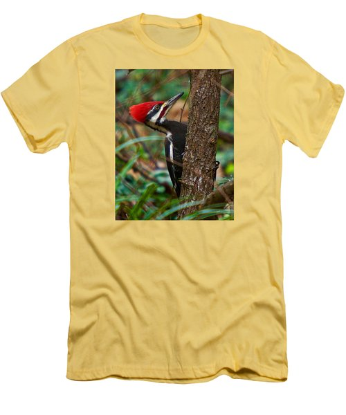 Male Pileated Woodpecker Men's T-Shirt (Athletic Fit)