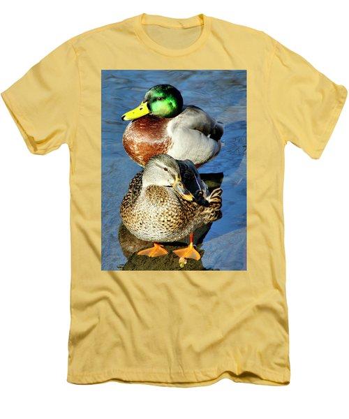 Mallard Couple Men's T-Shirt (Athletic Fit)