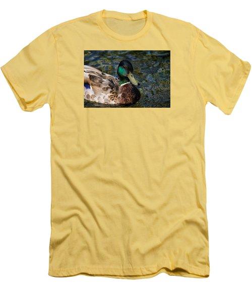 Mallard Portrait Men's T-Shirt (Athletic Fit)