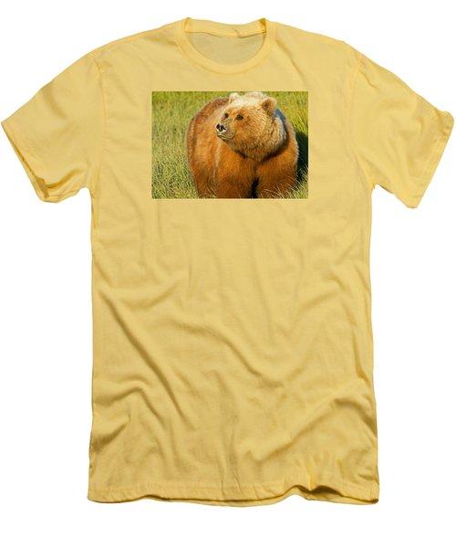 Mama Bear Men's T-Shirt (Athletic Fit)