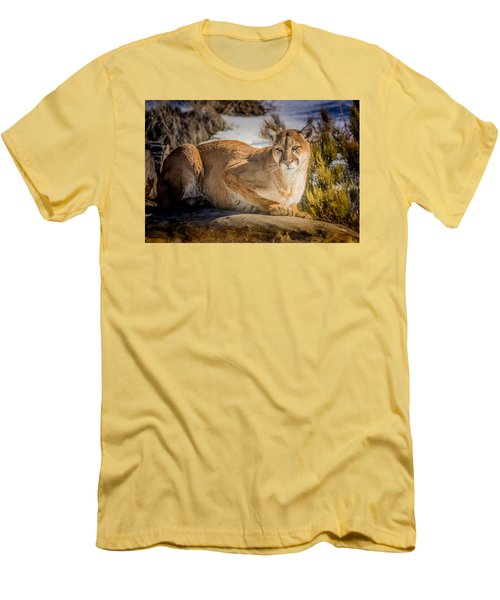 Men's T-Shirt (Slim Fit) featuring the photograph Milo At The Ark by Janis Knight