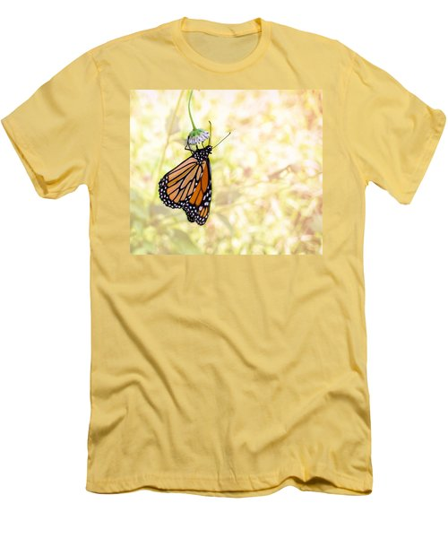 Monarch Butterfly Hanging On Wildflower Men's T-Shirt (Athletic Fit)