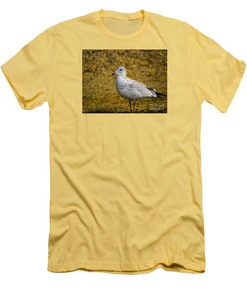 Men's T-Shirt (Slim Fit) featuring the photograph Mrs. Seagull by Melissa Messick