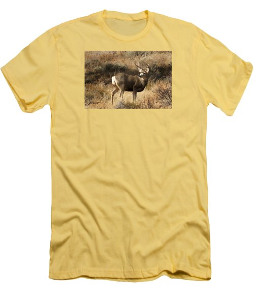 Mulie Men's T-Shirt (Athletic Fit)