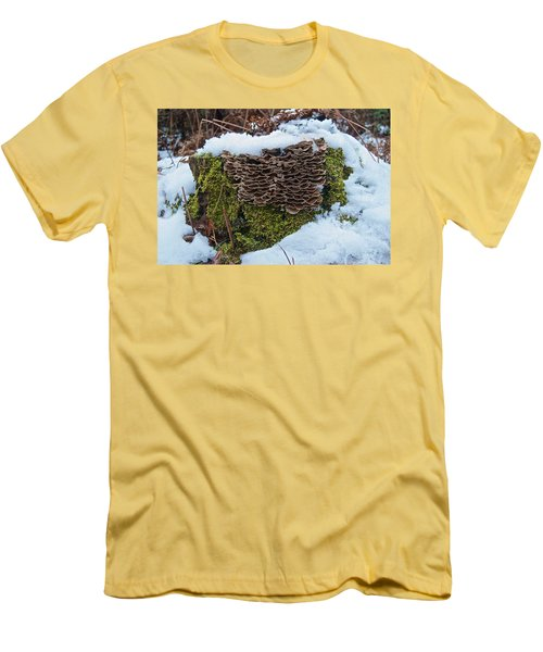 Mushrooms And Moss Men's T-Shirt (Slim Fit) by Michael Peychich