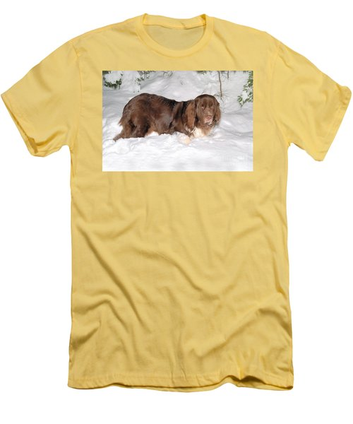 Men's T-Shirt (Athletic Fit) featuring the photograph Newf In Snow by Debbie Stahre