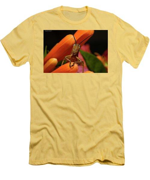 Now Lets Pray 666. Men's T-Shirt (Athletic Fit)