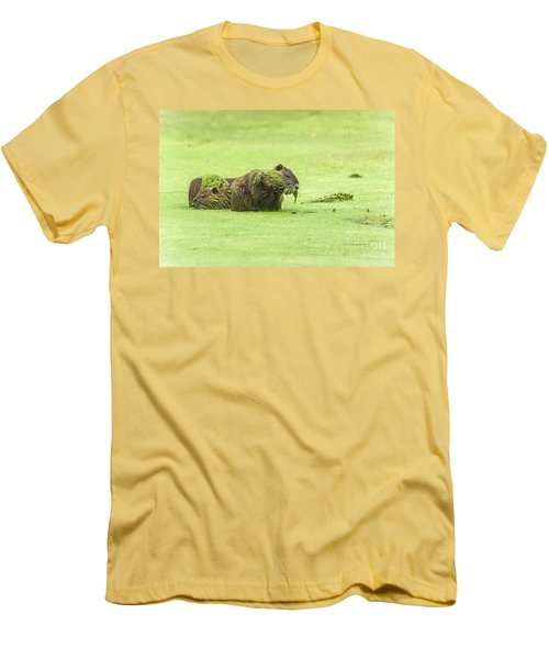 Men's T-Shirt (Slim Fit) featuring the photograph Nutria In A Pesto Sauce by Robert Frederick