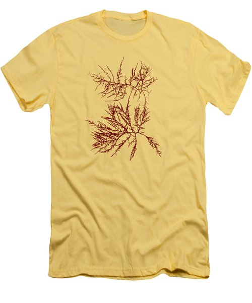 Men's T-Shirt (Slim Fit) featuring the mixed media Ocean Seaweed Plant Art Laurencia Tenuissima by Christina Rollo