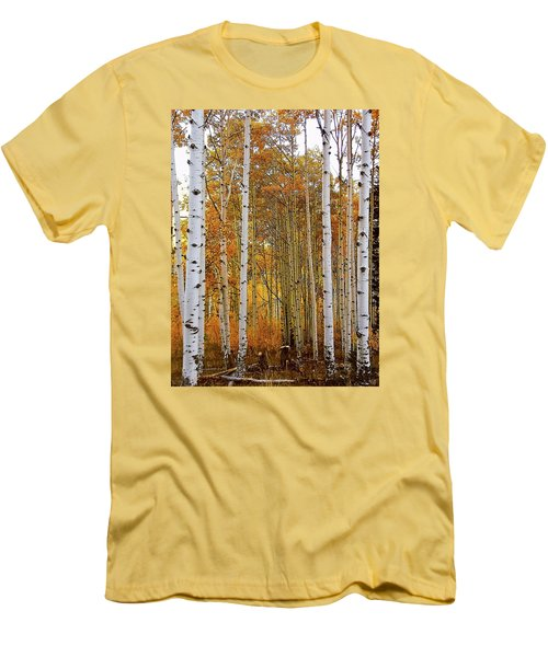 Men's T-Shirt (Slim Fit) featuring the photograph October Aspen Grove  by Deborah Moen