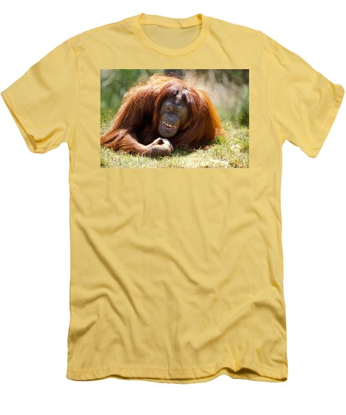 Orangutan In The Grass Men's T-Shirt (Athletic Fit)