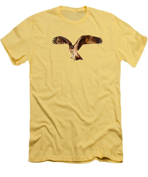 Osprey On The Branch Men's T-Shirt (Slim Fit) by Zina Stromberg