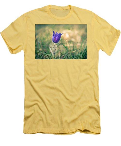 Pasque Flower Men's T-Shirt (Slim Fit) by Andreas Levi