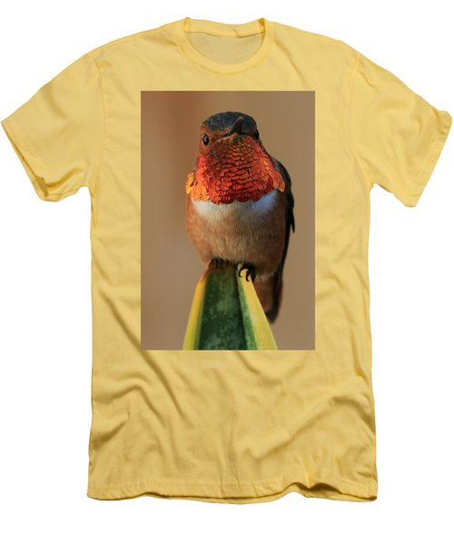 Perched On A Point Men's T-Shirt (Athletic Fit)